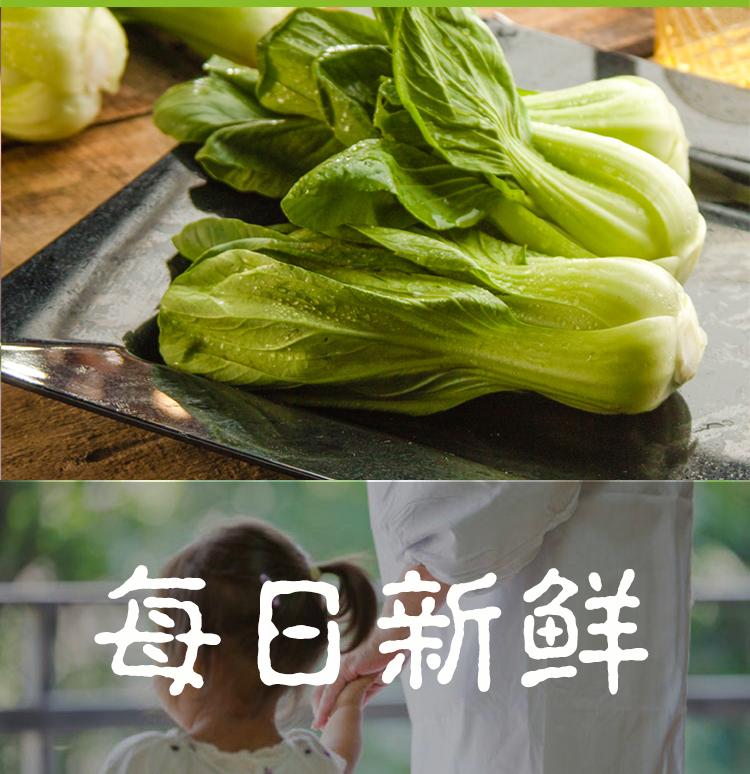 油菜_09.jpg