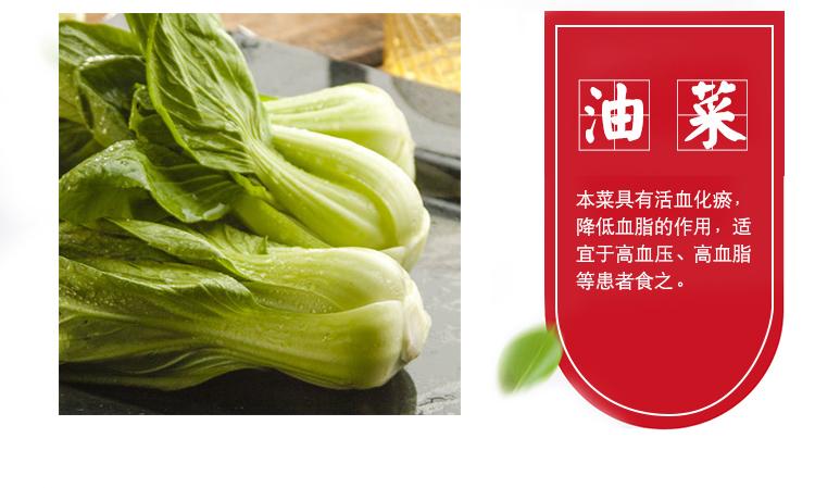 油菜_02.jpg