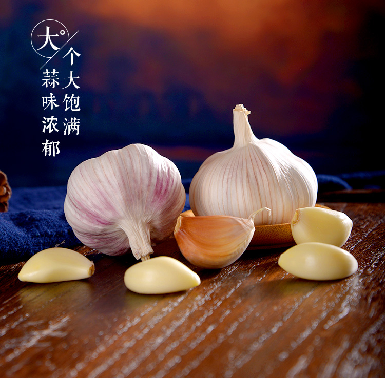 大蒜头_07.jpg