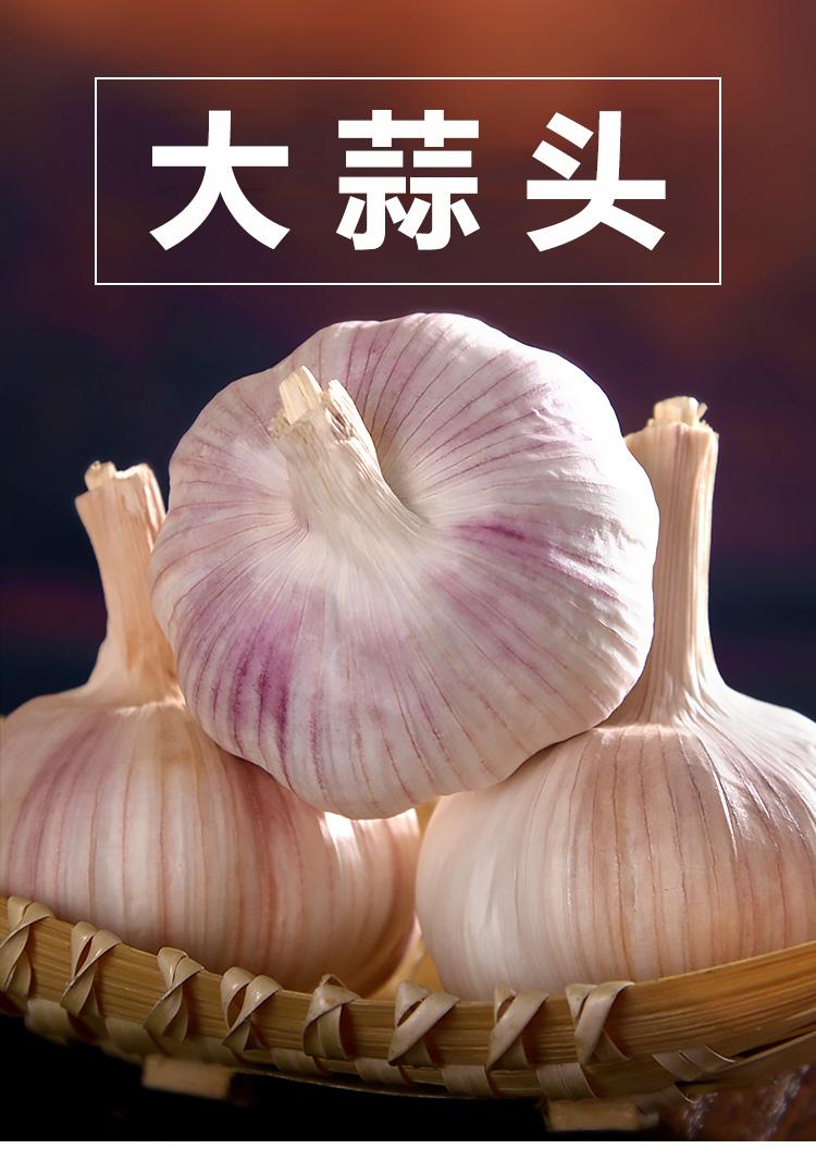 大蒜头_01.jpg